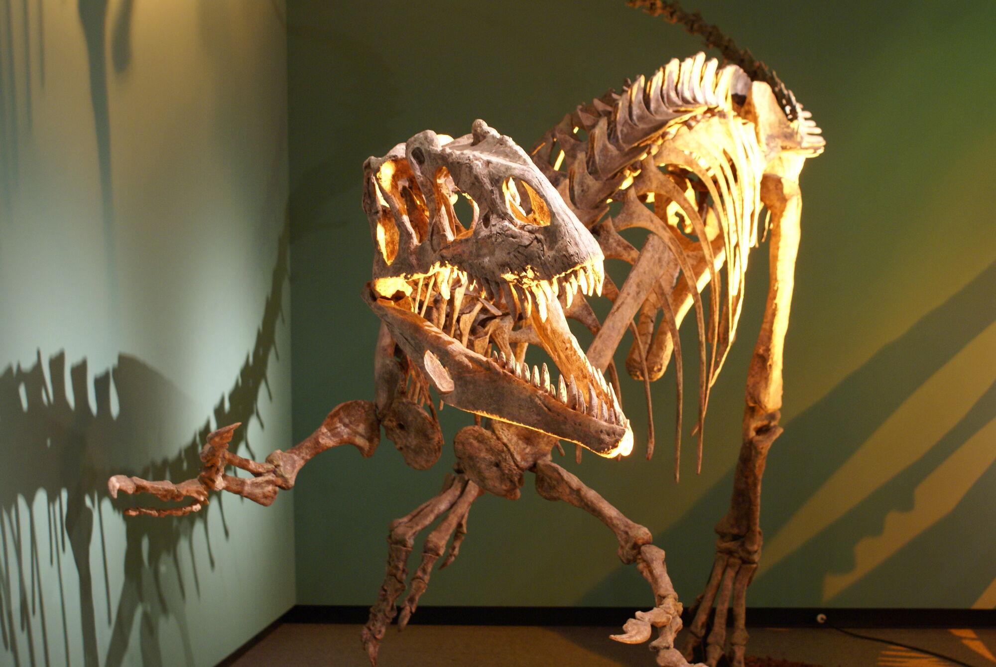 Dinosaurking hentai sexy gallery